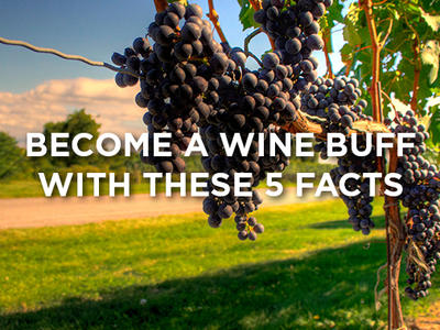 How to become a wine buff
